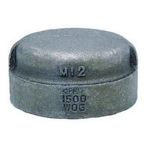 1-1/2inch 300# XH BLACK MI CAP DOM