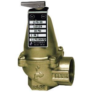 "Bell and Gossett 1170 Bronze Safety Relief Valve, 1"""""""" x 1"""""""", 30 psig"