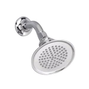 *5888120.008 PORCHER ARCHIVE SHOWERHEAD ONLY POLIS